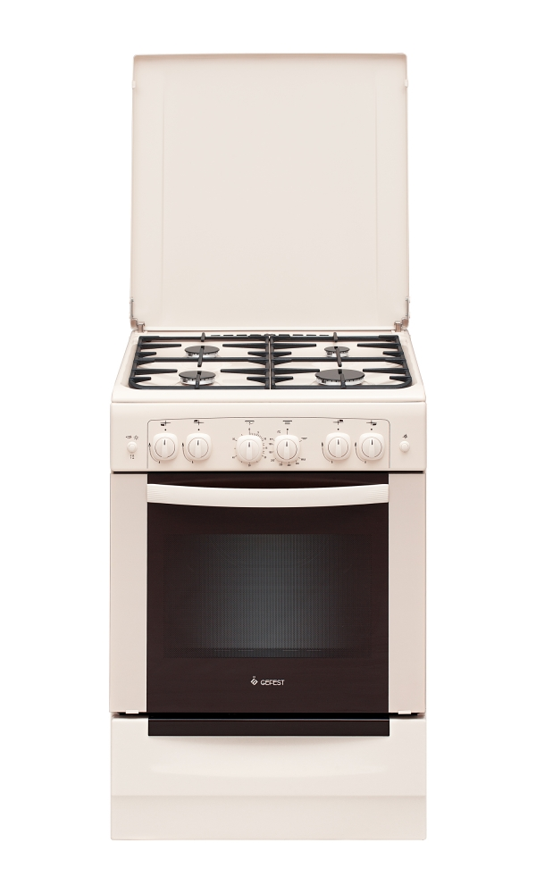 Газовая плита ПГ 6100-02 0167 купить в СПБ